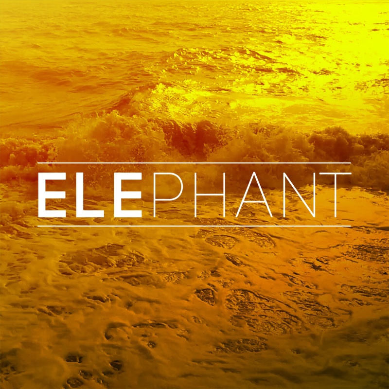ELEPHANTWAVES